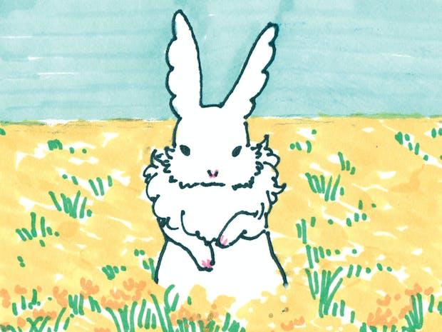 토끼의 여행 드로잉 : 제주 이미지