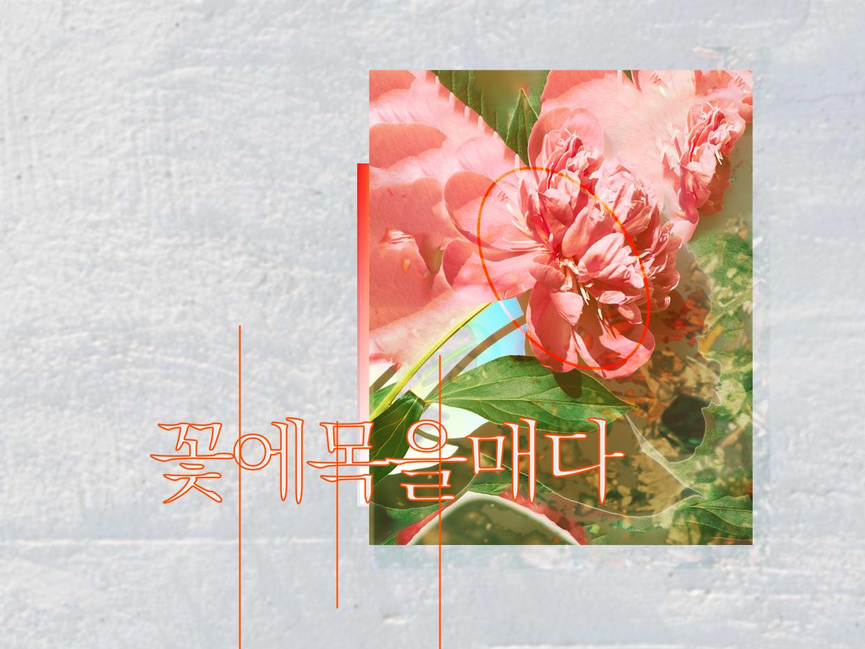관계를 고민하는 우리를 위한《꽃에 목을 매다》