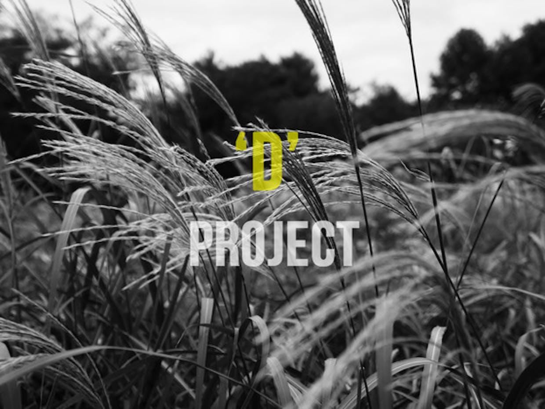 기본 프로젝트 커버 이미지